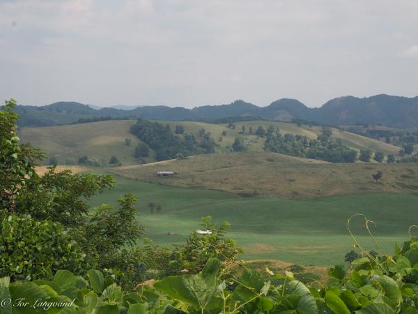Southern VA countryside