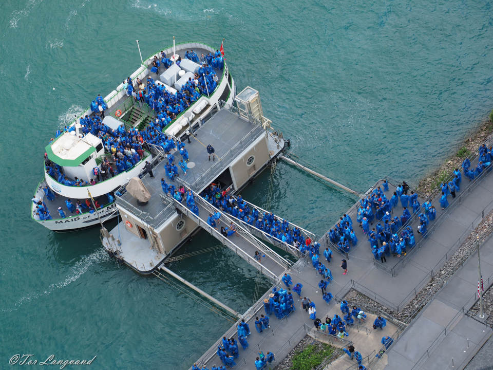 Maid Of The Mist - All Onboard